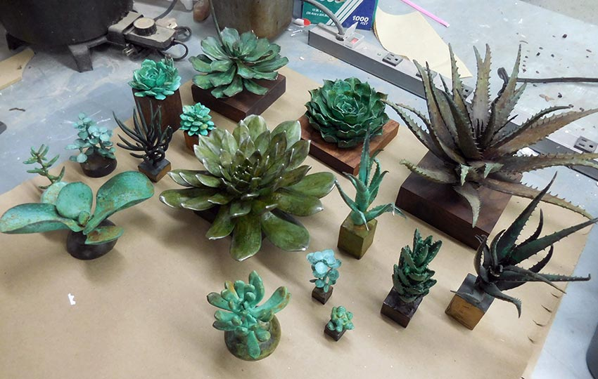 Small Succulents